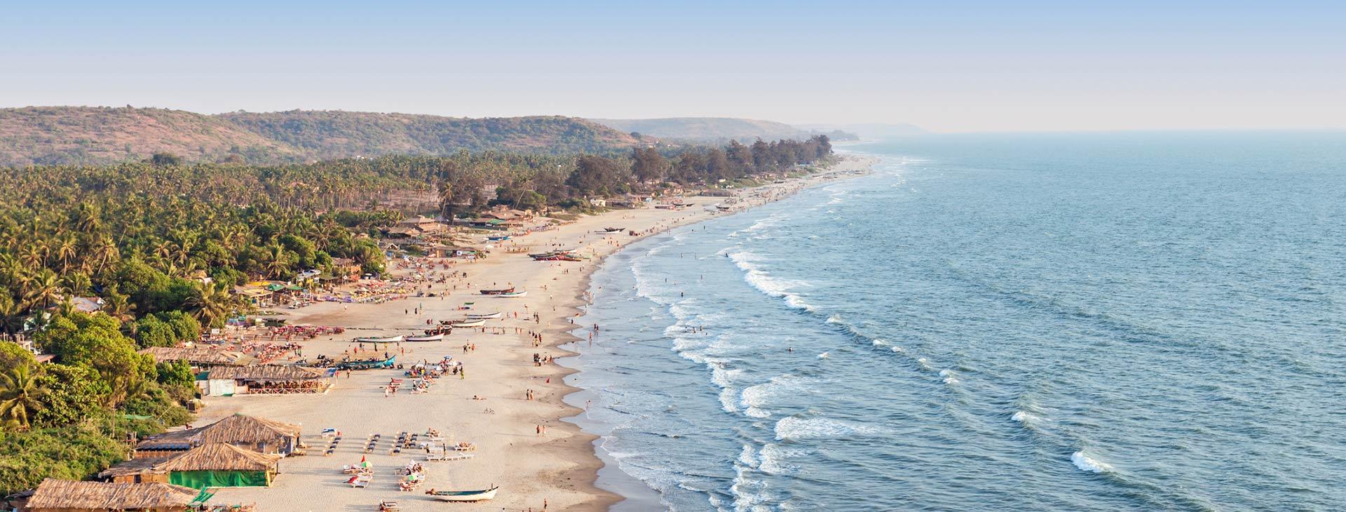 korytnačka pláž xl1 orgie